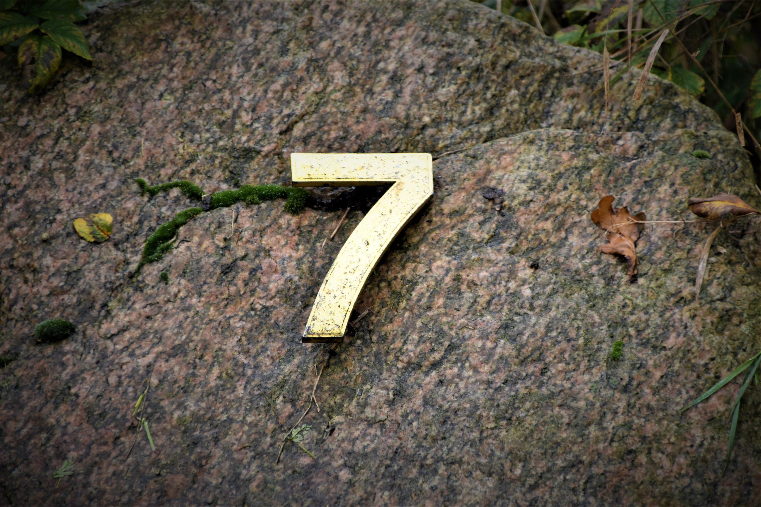 7 Dinge
